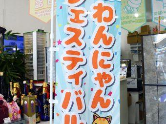 麻布十番犬猫クリニック-宮古島分院-様 のぼり